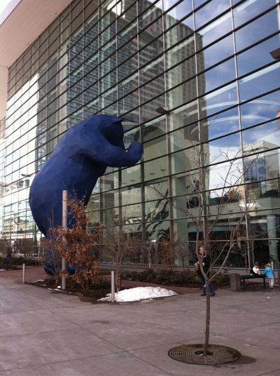 Denver CO Blue Bear