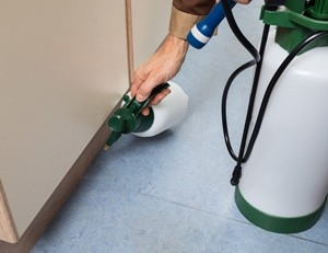 pest control in rental homes